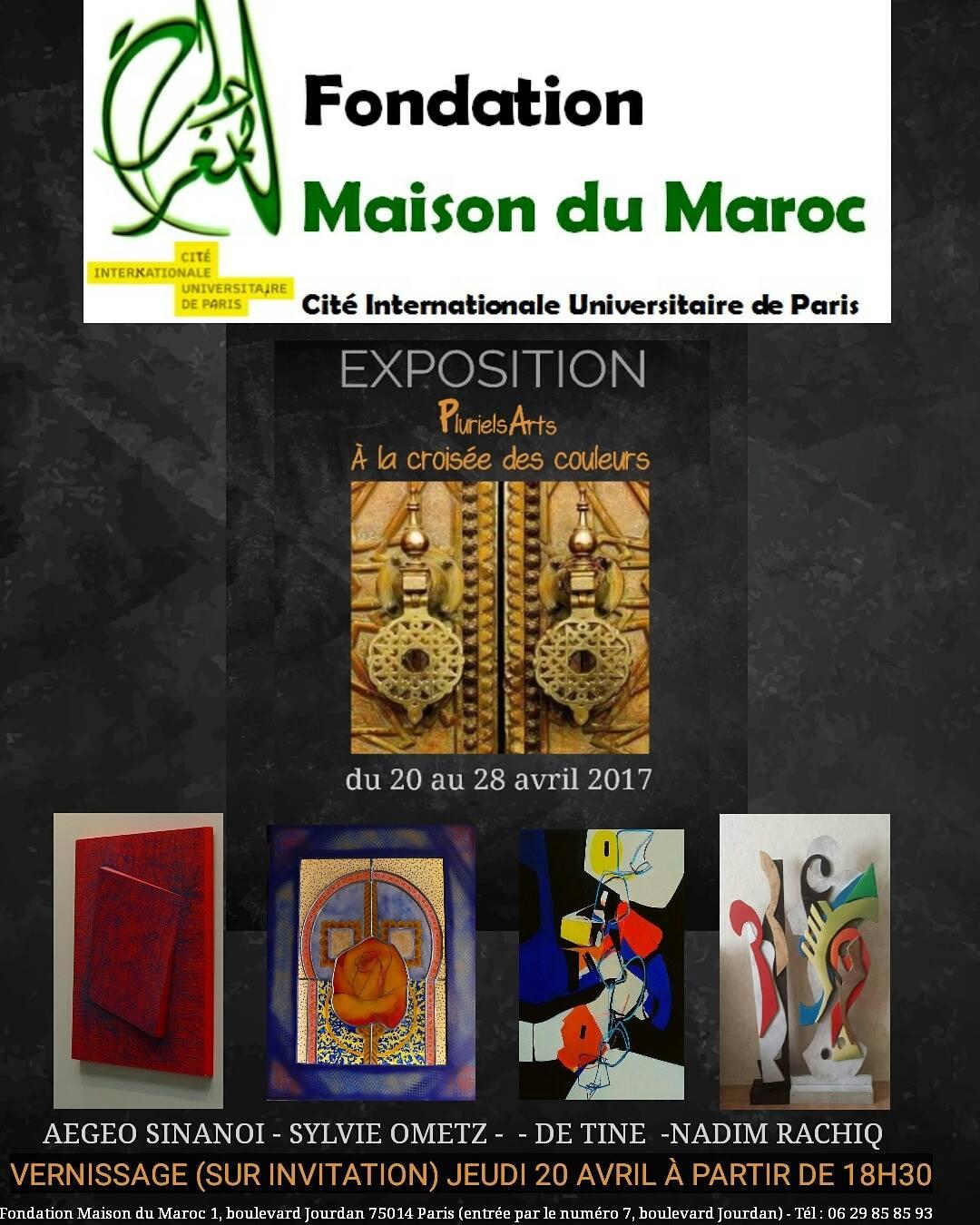 Plurielsarts la fondation maison du maroc pluton magazine - Maison du maroc a paris ...